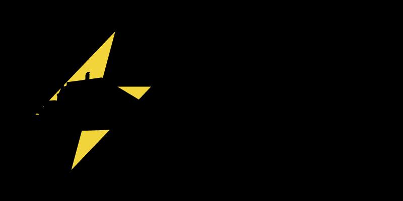 Logo Bolt inc (1)